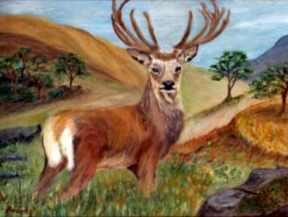 Andrea Webber 'New Stag'