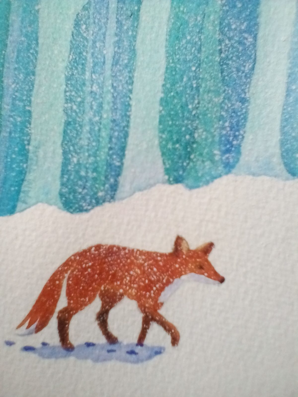 Pam Teal 'Fox'