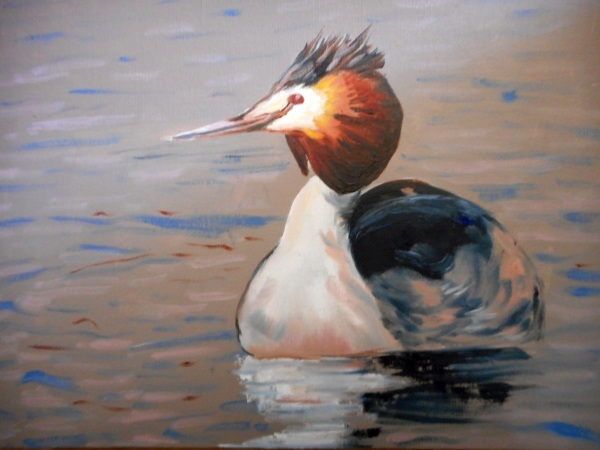 Alison Perks 'Great crested grebe'