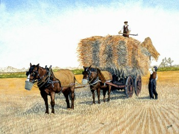 John Randall 'HarvestTime'